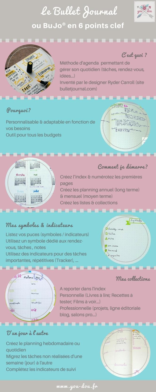 Bujo_infographie.jpg